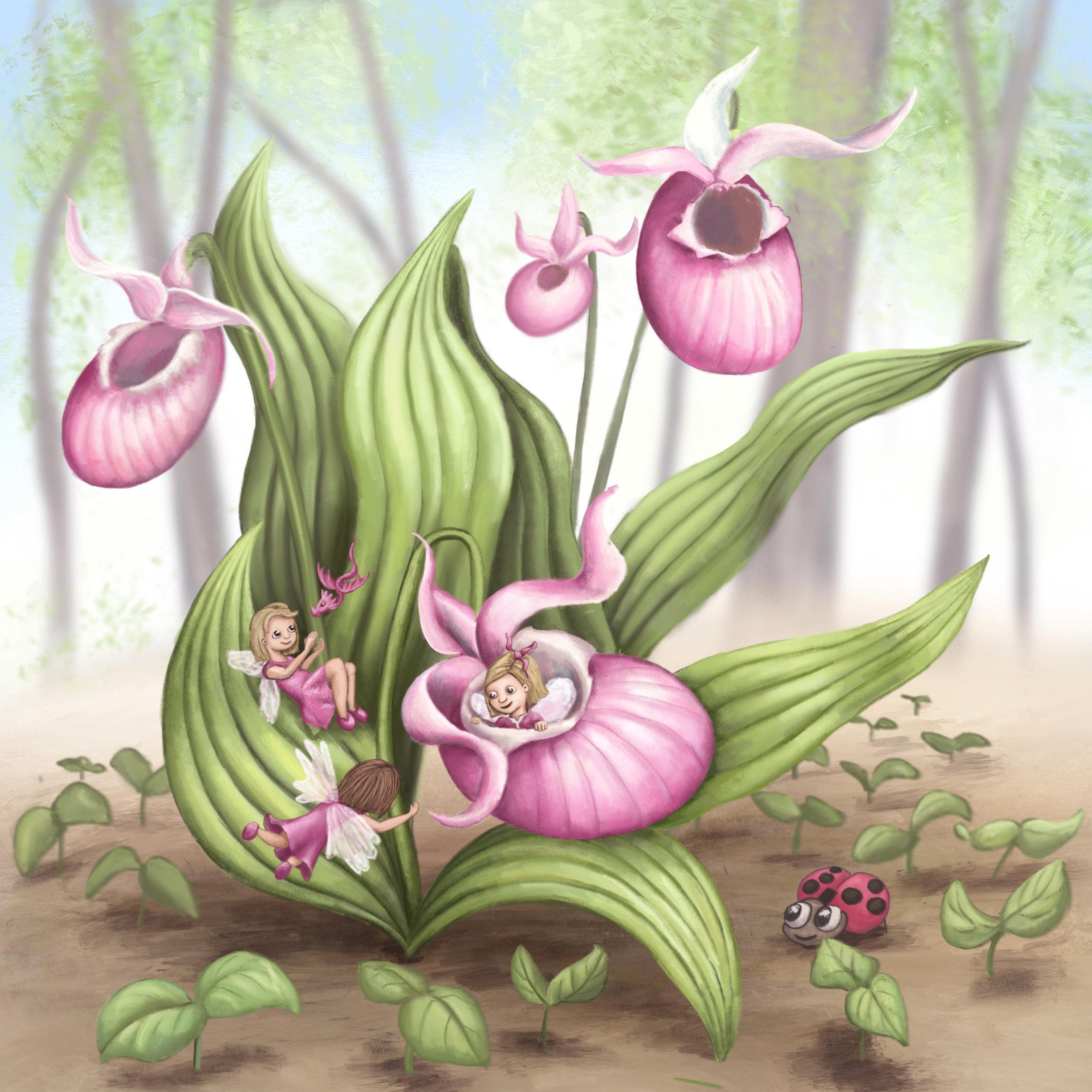 Slipper Orchid Fairies -