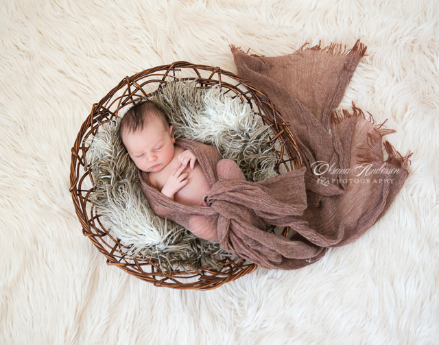 Newborn Photographer Mt.Pleasant, SC-9.jpg