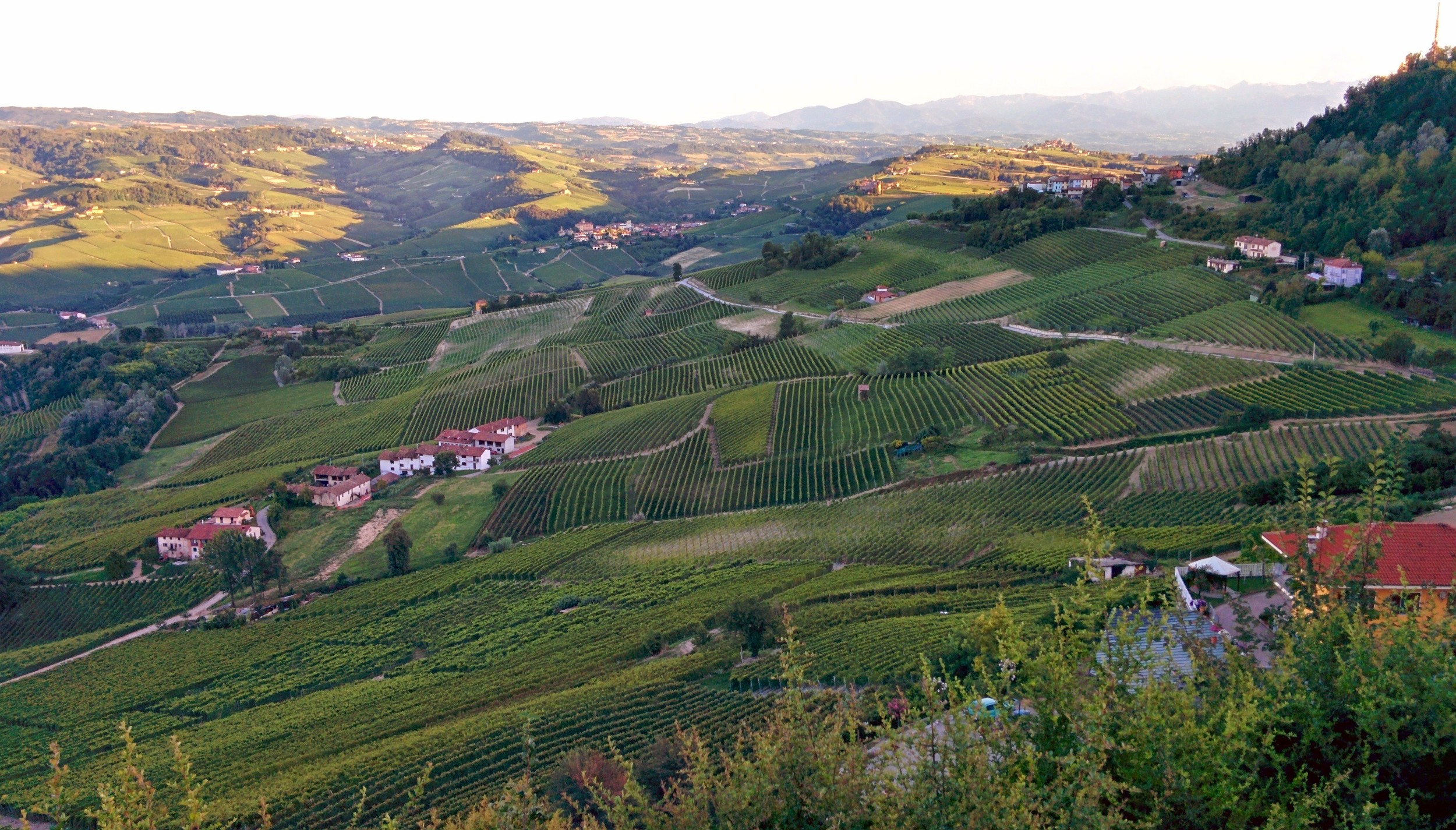 from the peak of la morra, the view of barolo, the hilltop in the distance on the right