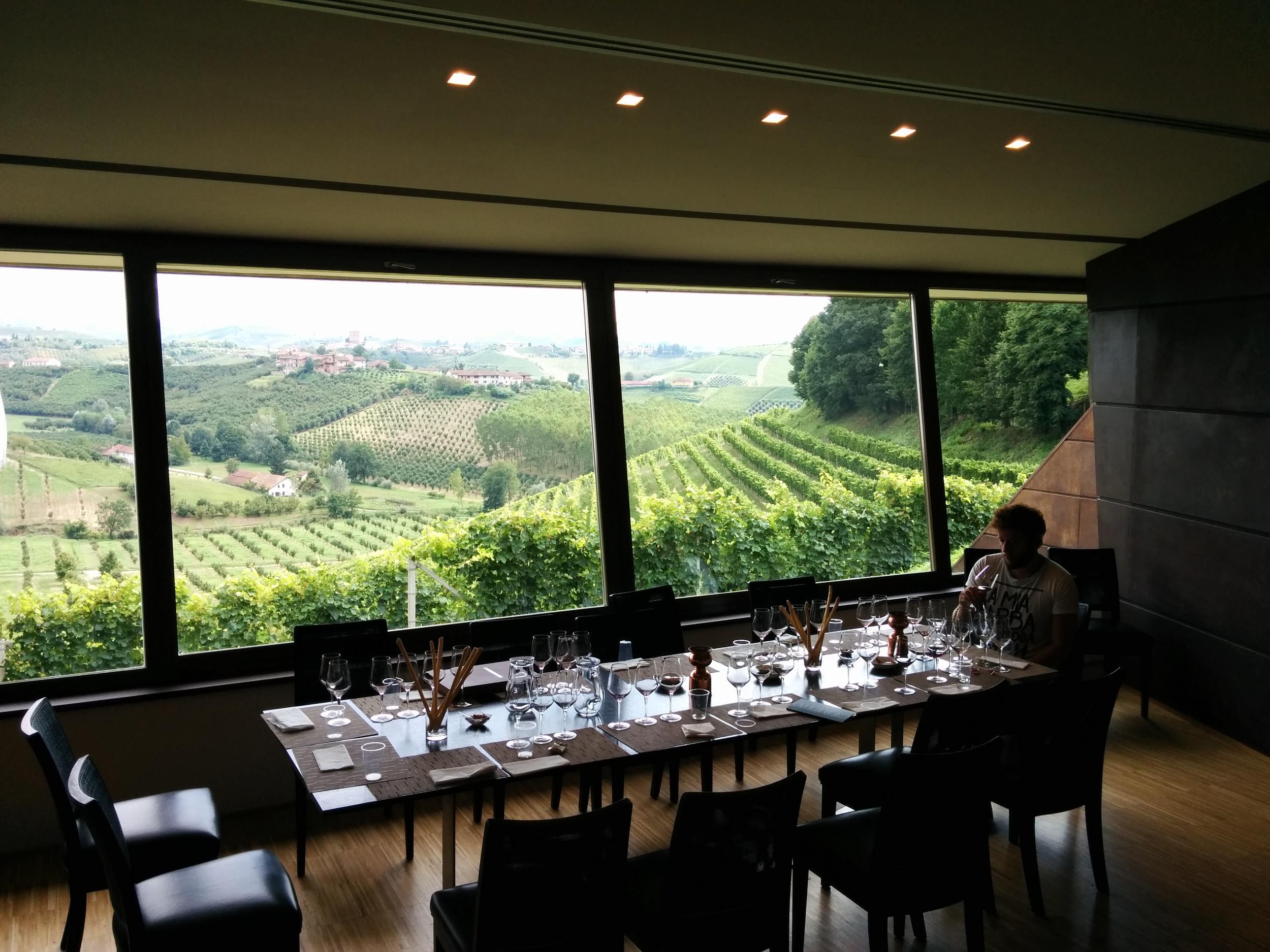 San Cassiano, Alba (CN): the Ceretto family vineyard.