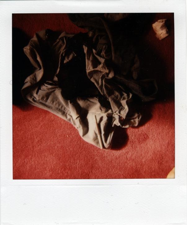 polaroid-xii.jpg