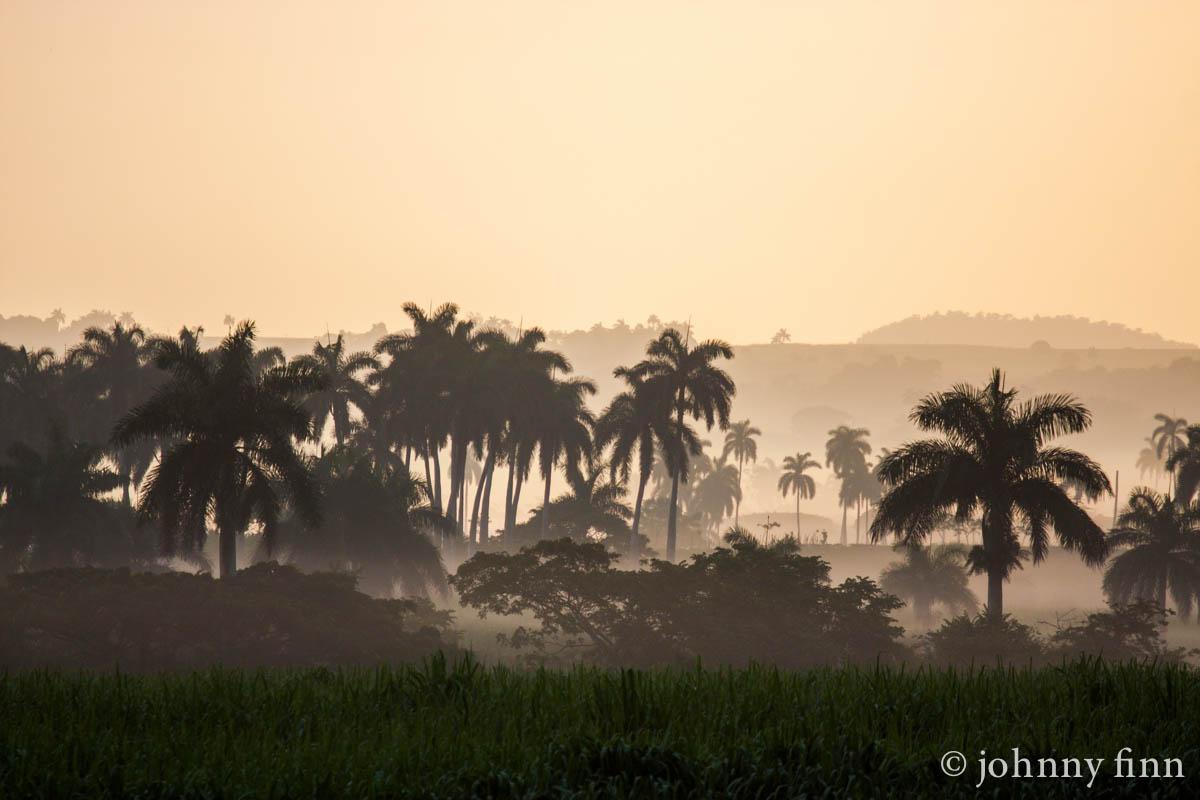 palmas at sunrise, 2013
