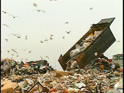 stock-footage-dump-truck-dumps-garbage-betacamsp.jpg