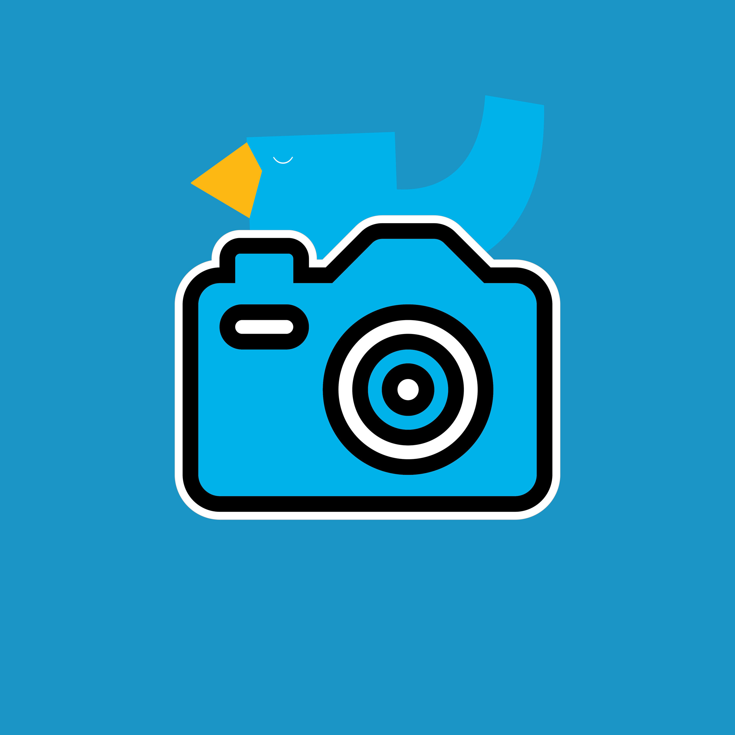 Photographer - • digital SLR• lenses (50mm, 18-135mm, 70-200mm)• tripod• flash