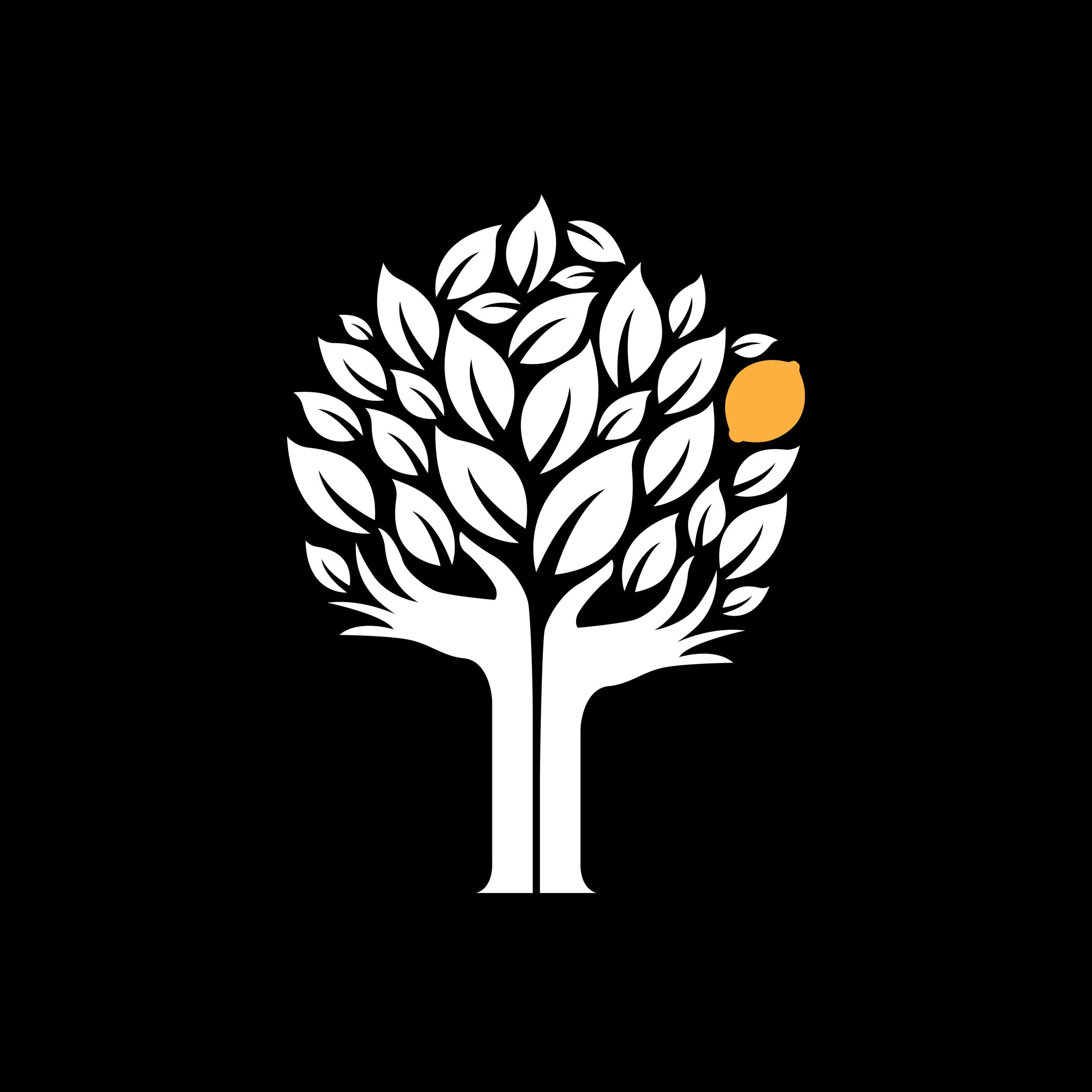 The FMK Foundation - thefmkfoundation.org