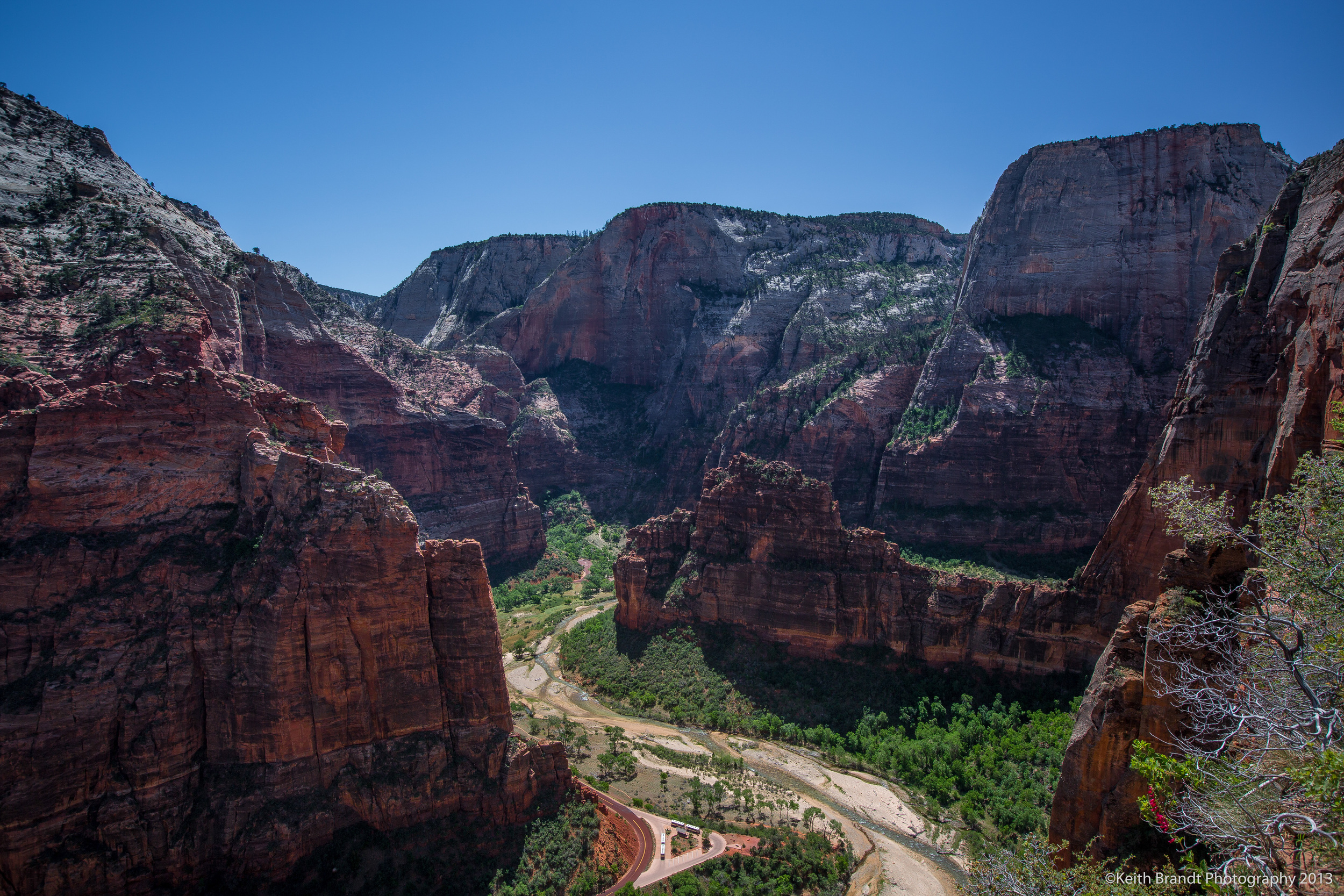 Zion Canyon from Scout's Lookout