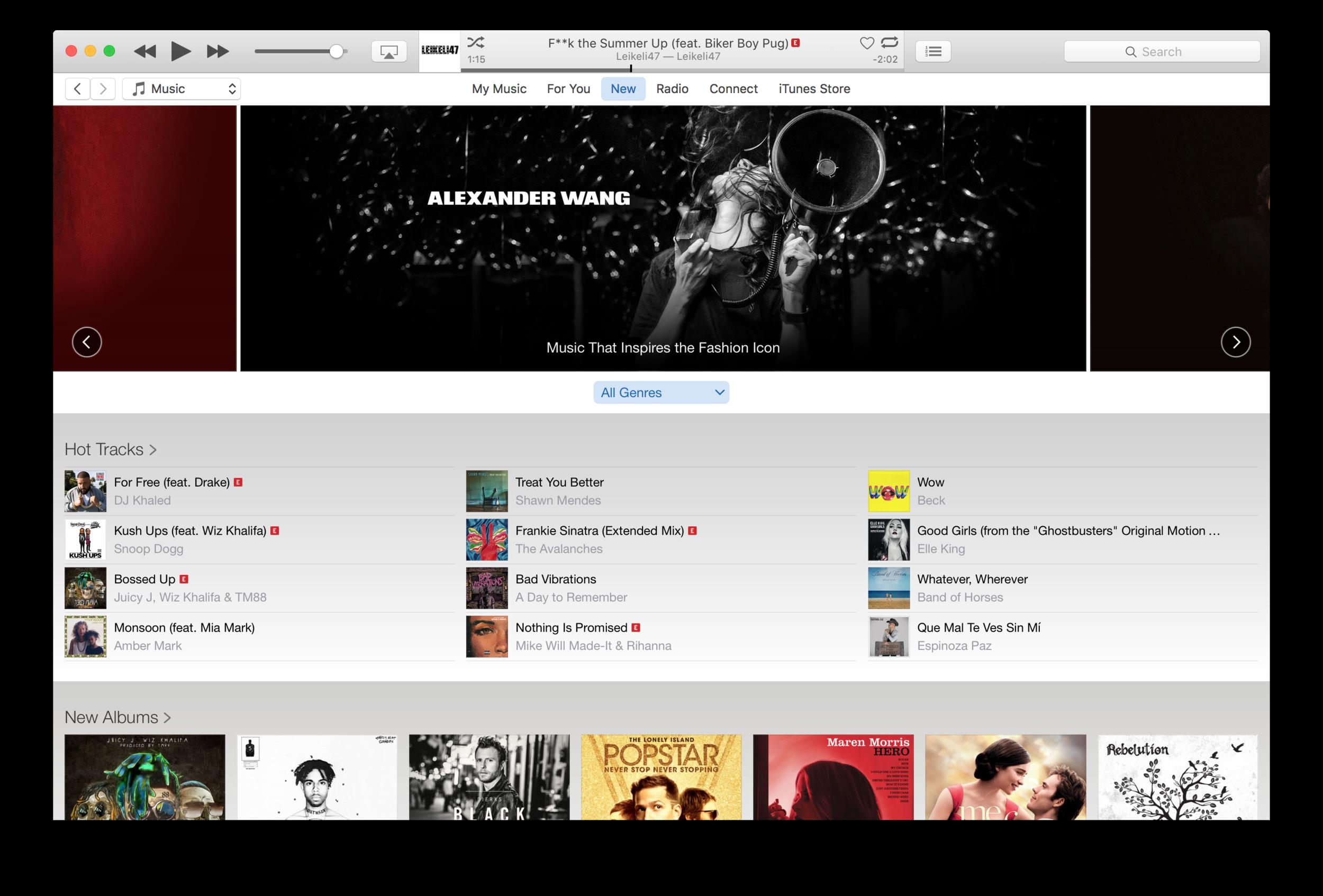 Alexander Wang - Store-art on Apple Music