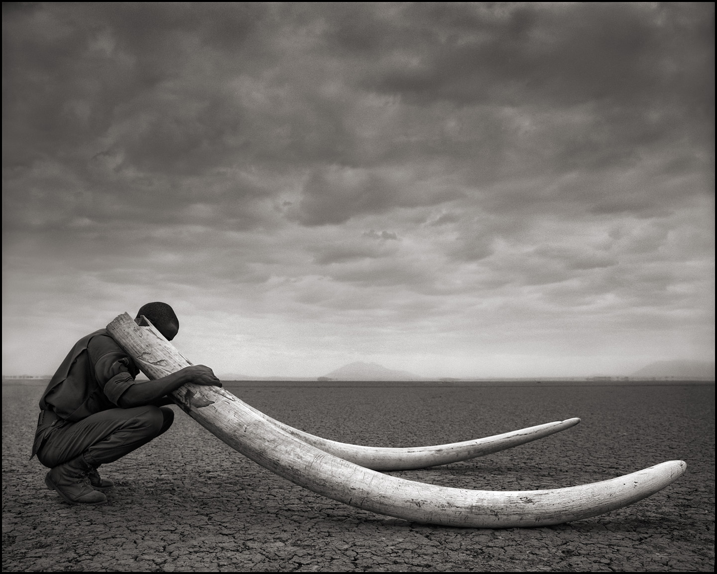 © Nick Brandt, Ranger with Tusks of Killed Elephant, Amboseli, 2011. Courtesy of the Artist and Hasted Kraeutler, NYC.