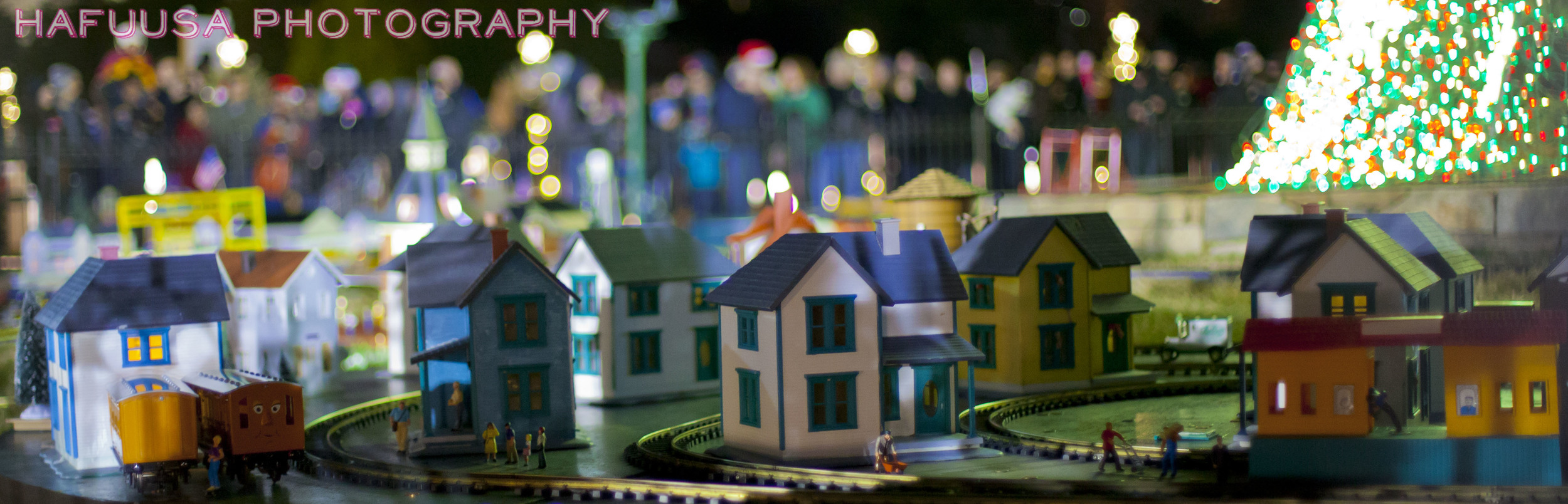 Close Up Minature Homes.jpg