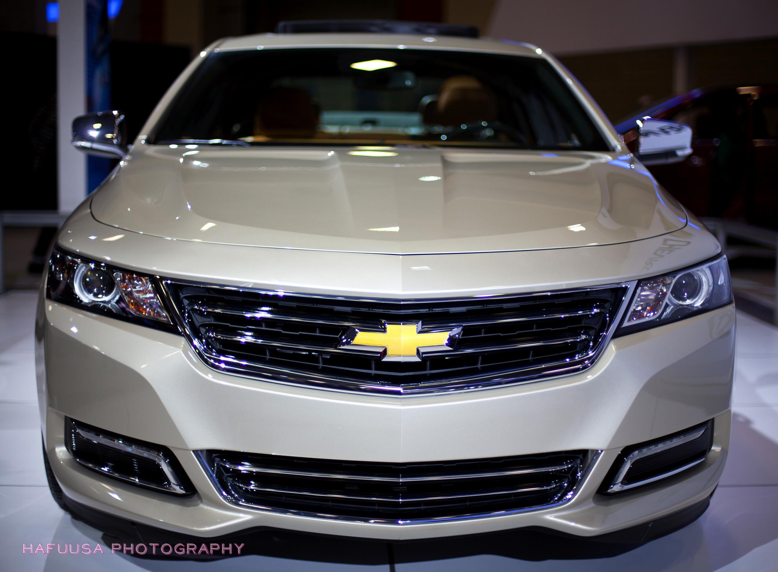 Impala Close Up.jpg