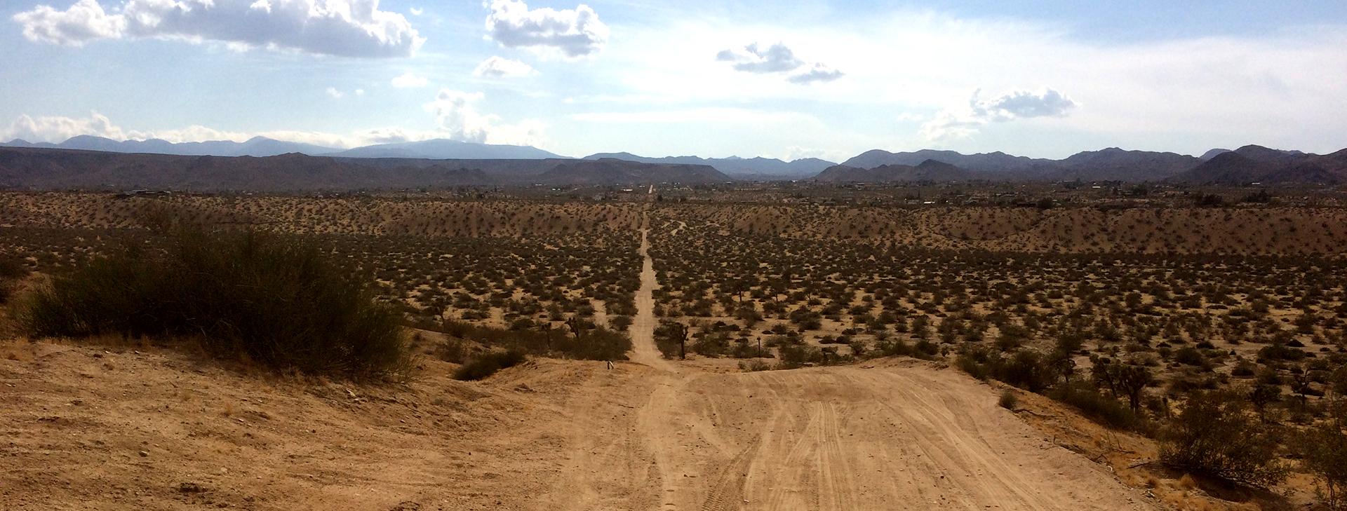 desertpath2.jpg