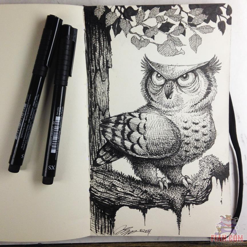 Fian Arroyo_Owl sketch.jpg