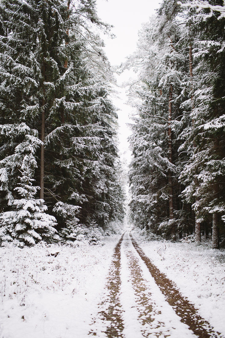 A walk in winter wonderland. Beautiful forrest. Why getting outside is so good for the soul www.houseofsmilla.com