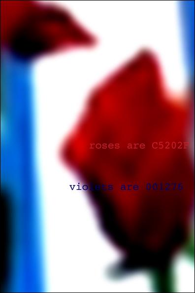 text_roses.jpg
