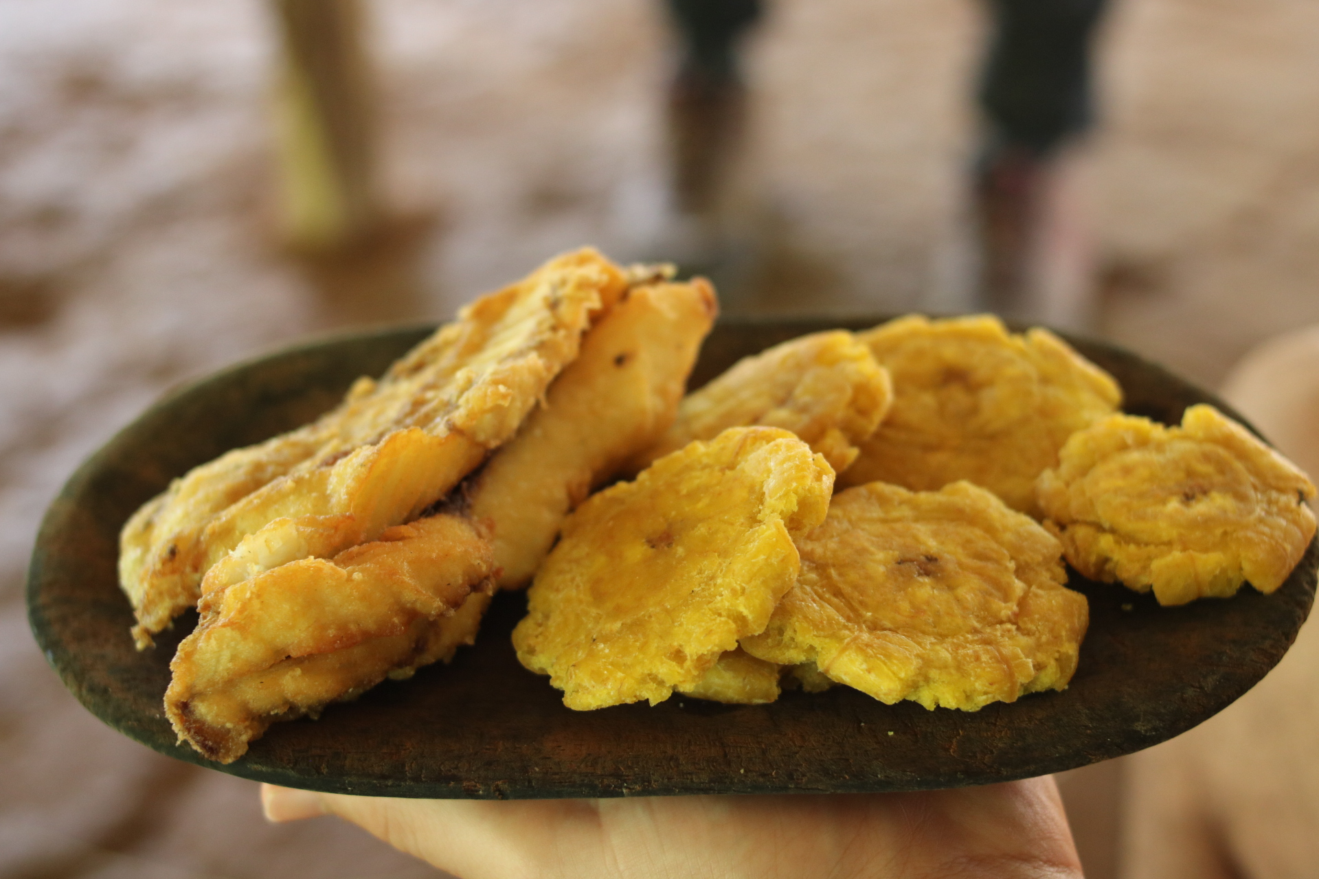 Fried Plantains and tilapia from the embera tribe in Panama