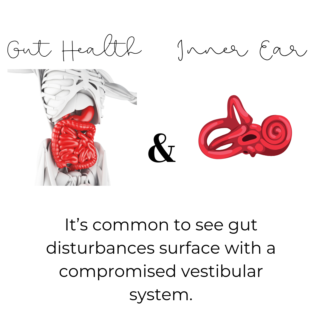 Gut Health and the Inner Ear.png