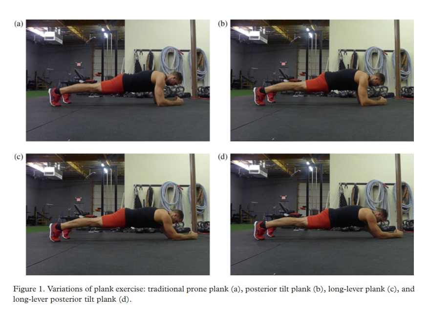 An electromyographic comparison of a modified version of the plank with a long lever and posterior tilt versus the traditional plank exercise ( 2 )