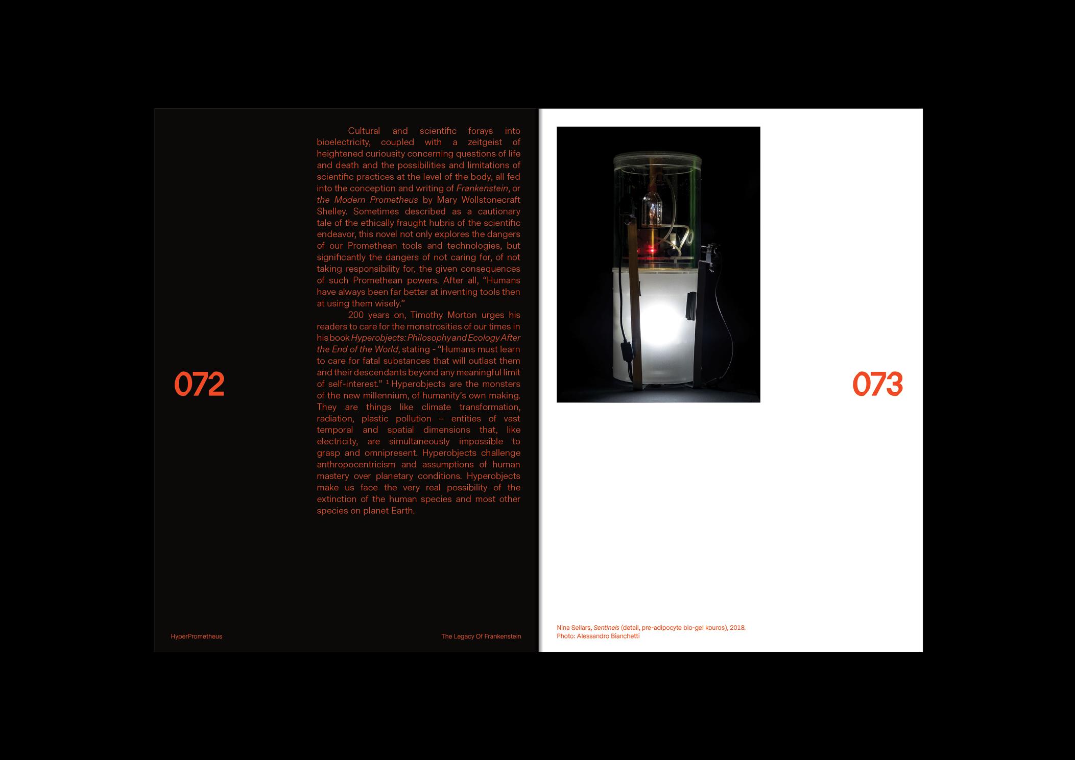 2019-Website78.jpg