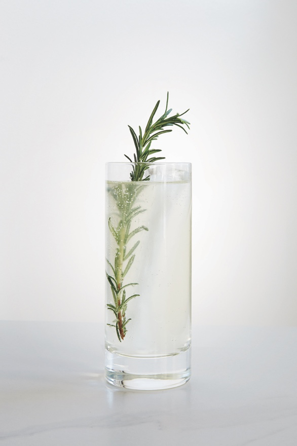 CALIFORNIA 75  1 oz Chareau  1 oz St. George Terroir Gin  1/2 oz Fresh Lemon Juice  1/2 oz Simple Syrup  5 oz California Sparkling Wine  Shake Chareau, gin, lemon juice, and simple syrup with ice. Strain into Collins glass over ice. Top with California sparkling wine. Garnish with fresh rosemary.