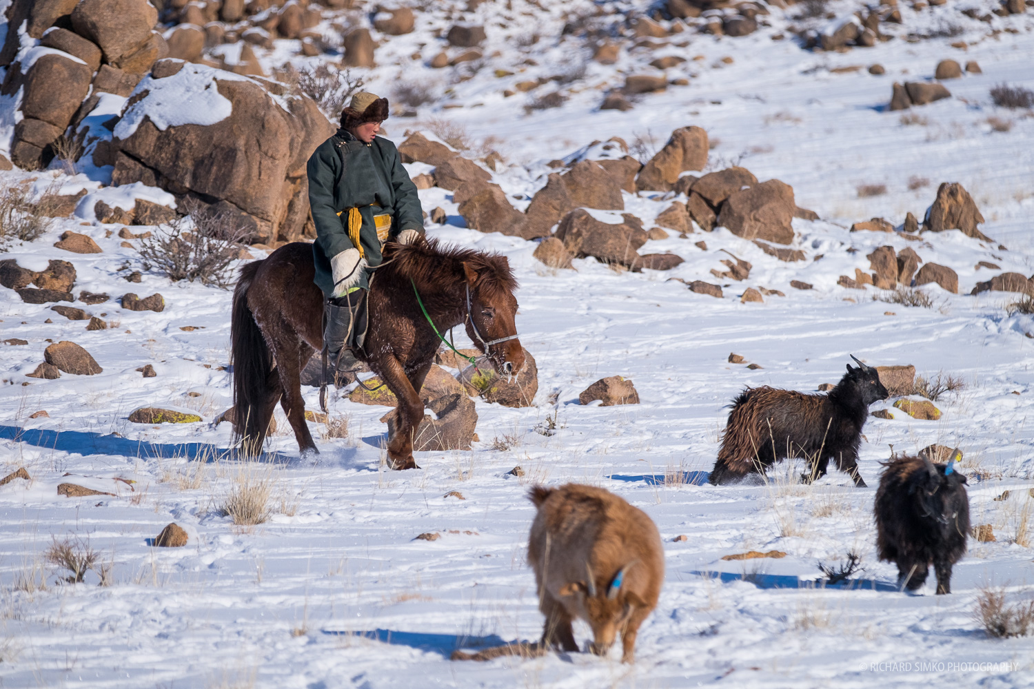 Neighbouring family did the herding traditional way, on horseback.