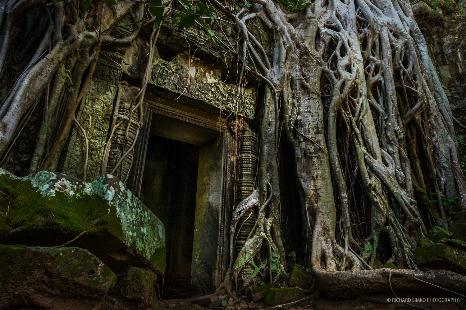 Famous door with tree rots at Ta Phrom temple in ancient Angkor area.  Fujifilm X-T1, Fujinon 14mm 2.8