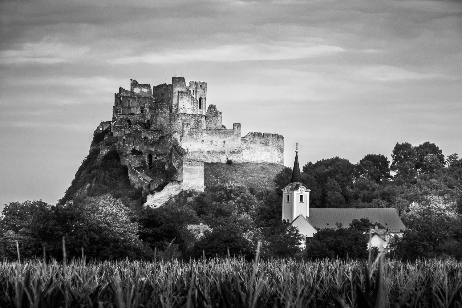 Beckov Castle.As in the previous image, the light was extremely flat and I did my best to bring out some shape out of the subject.