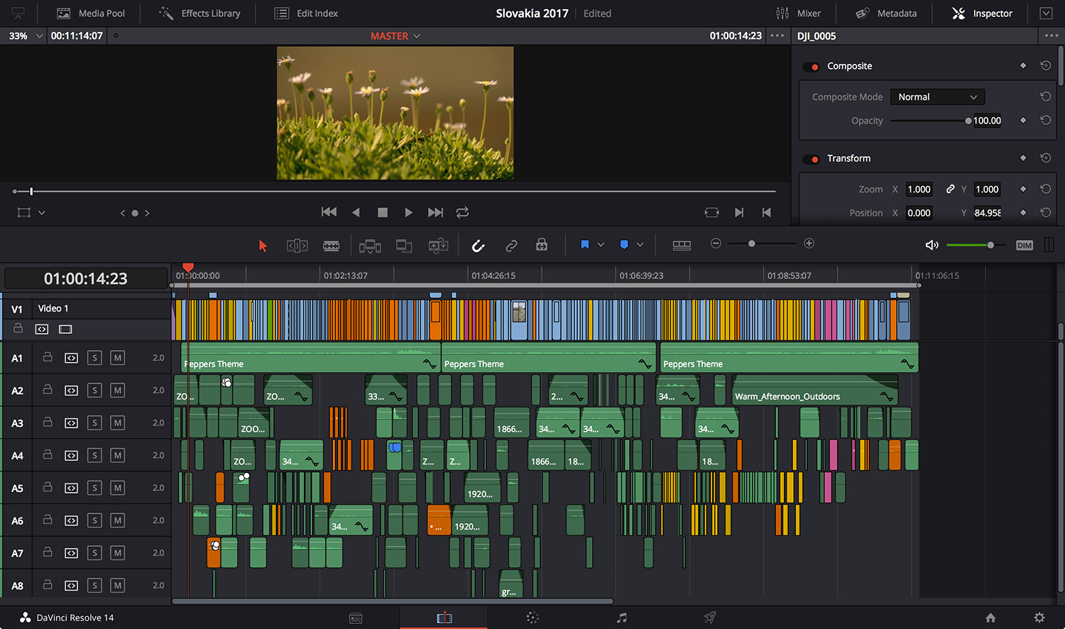 I mixed way too many framerates in this project. In the video layer the blue represents 24fps footage. Every other color represents a different framerate.