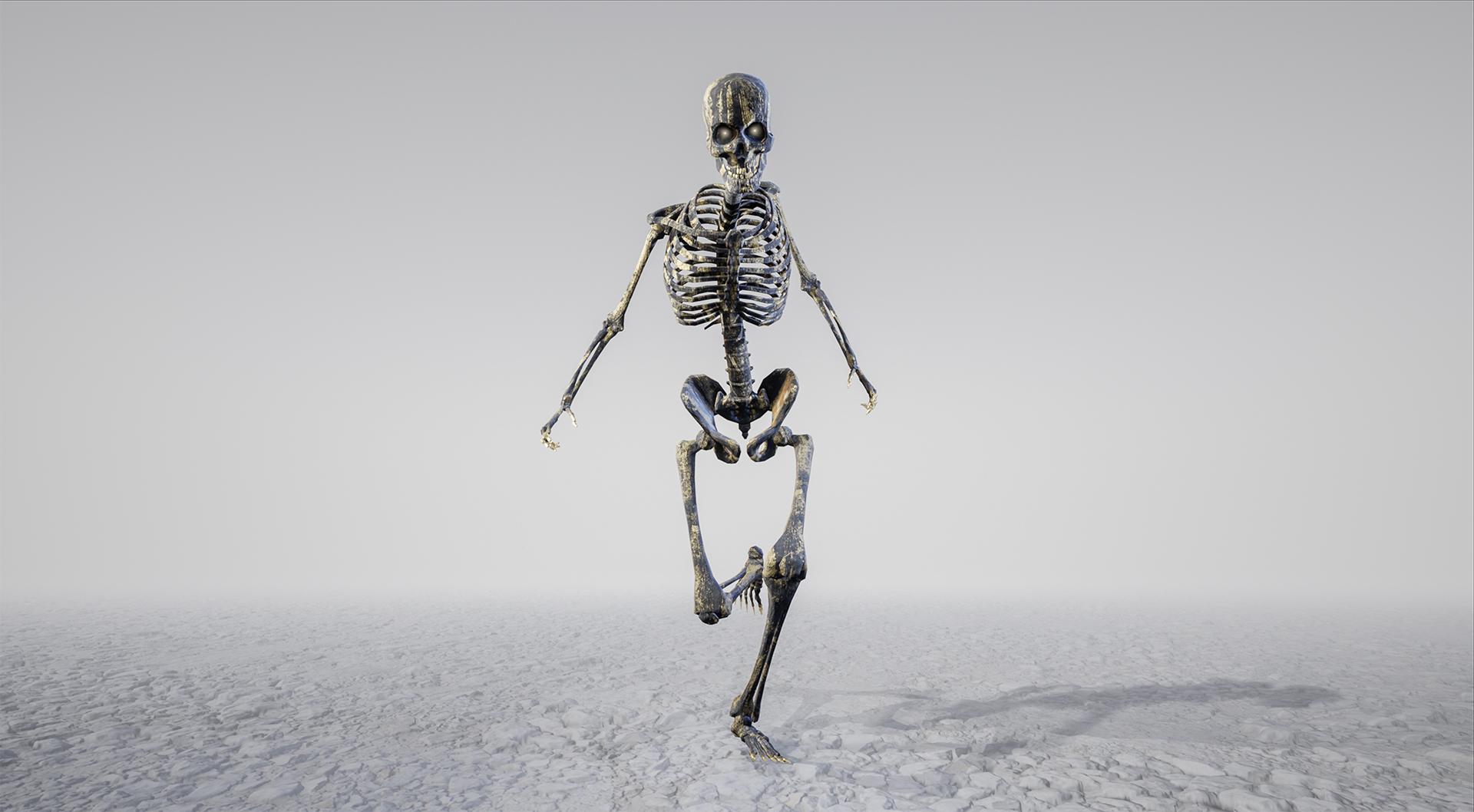 skeletons_01.jpg