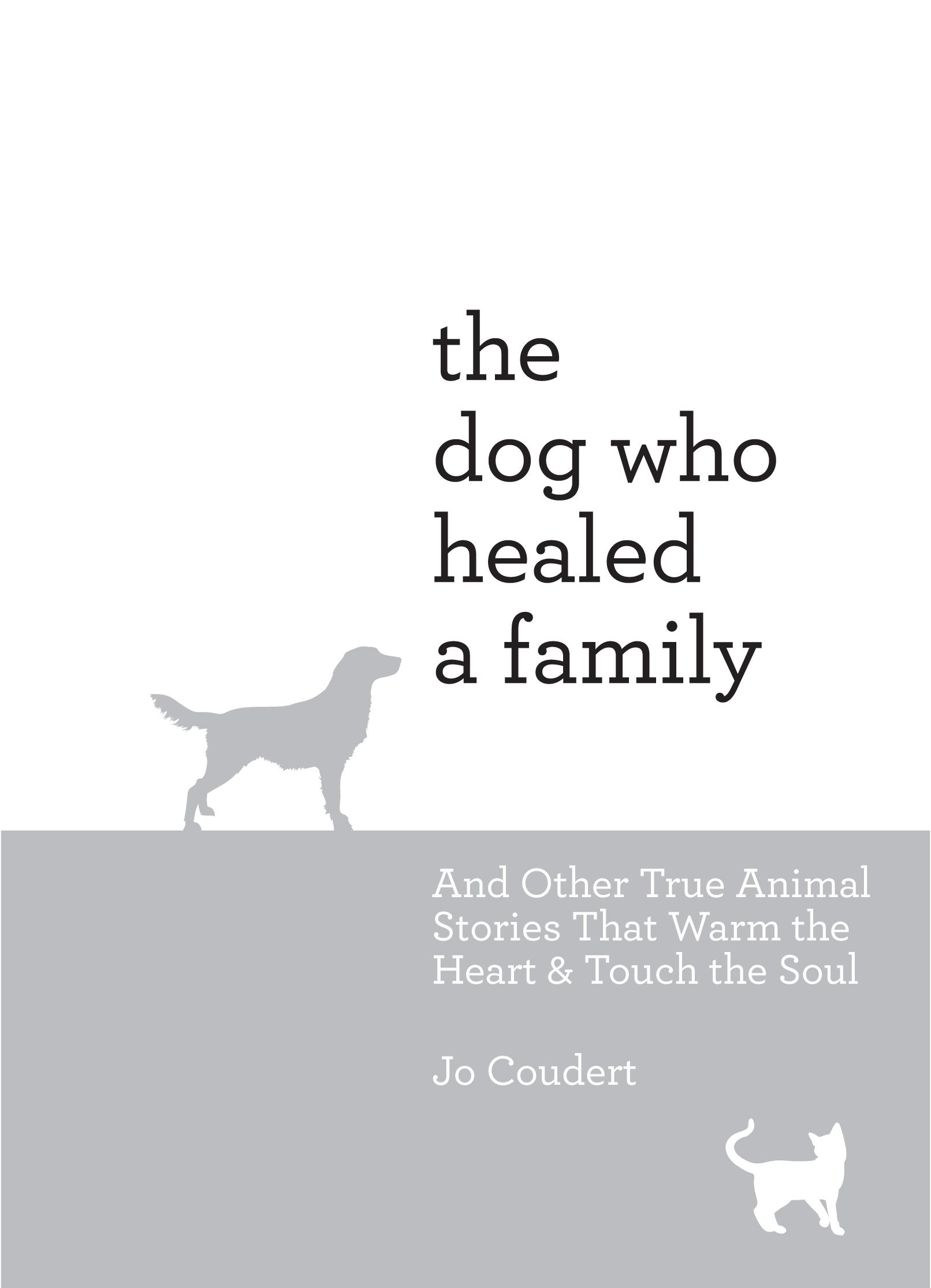 dogfamily2.jpg