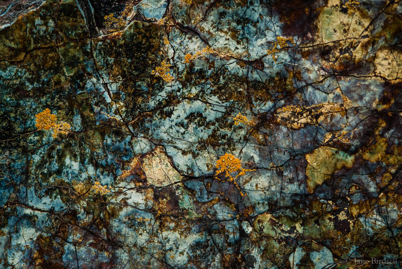 Turquoise serpentine detail