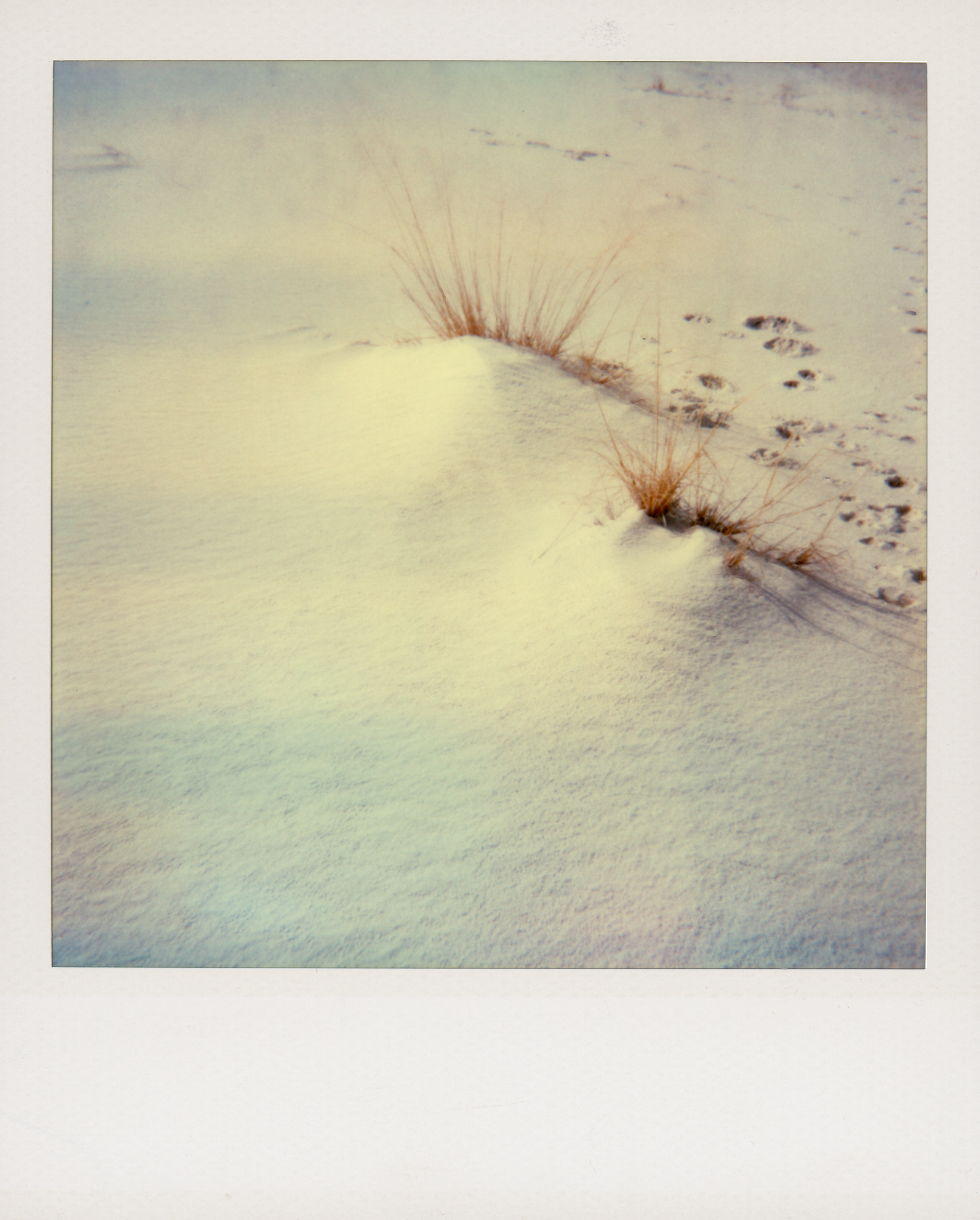 polaroid white sands002.jpg