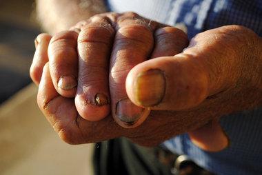 Immigrants in Mississippi Farm Town Pray Bill Will Die - Associated Press