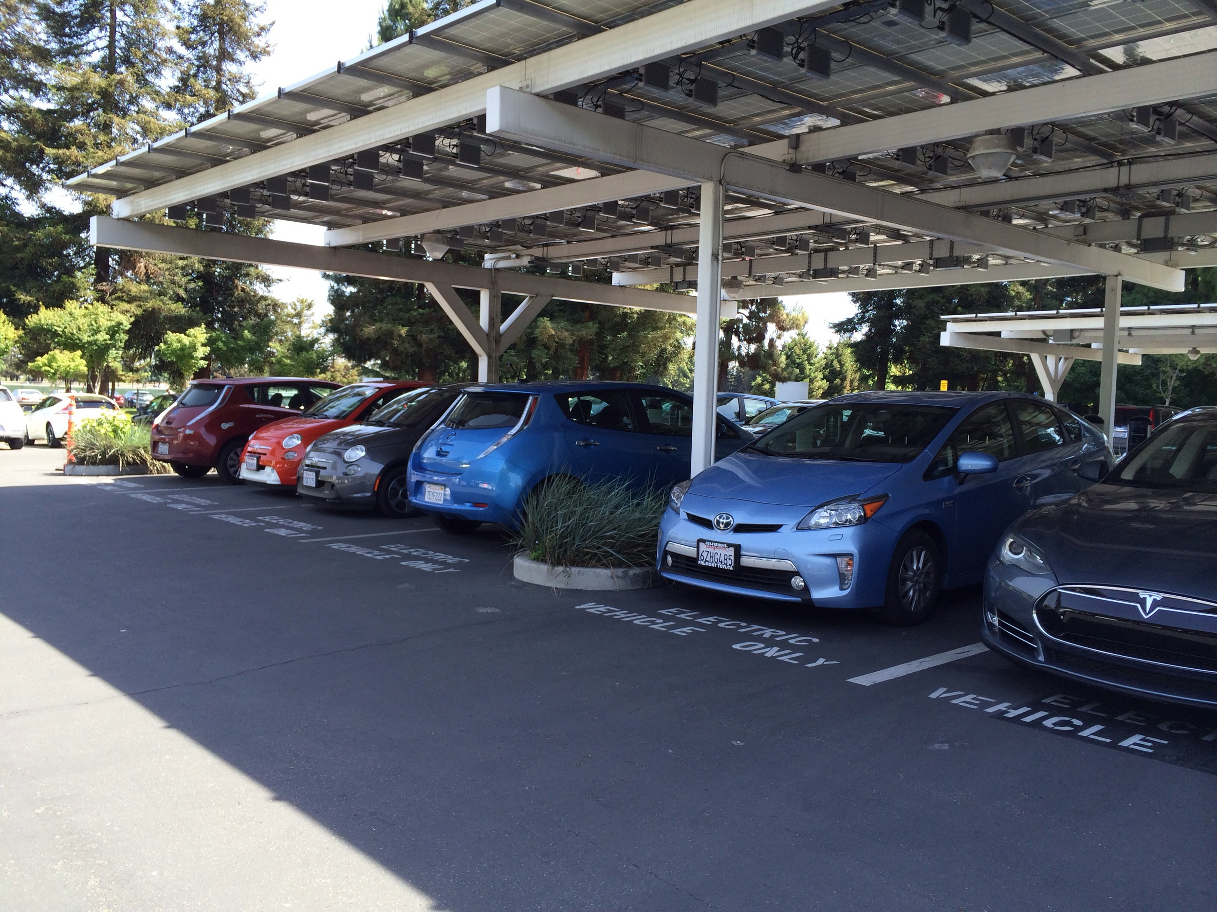 FrankE the Fiat 500e, happily charging in the solar shade at Google.