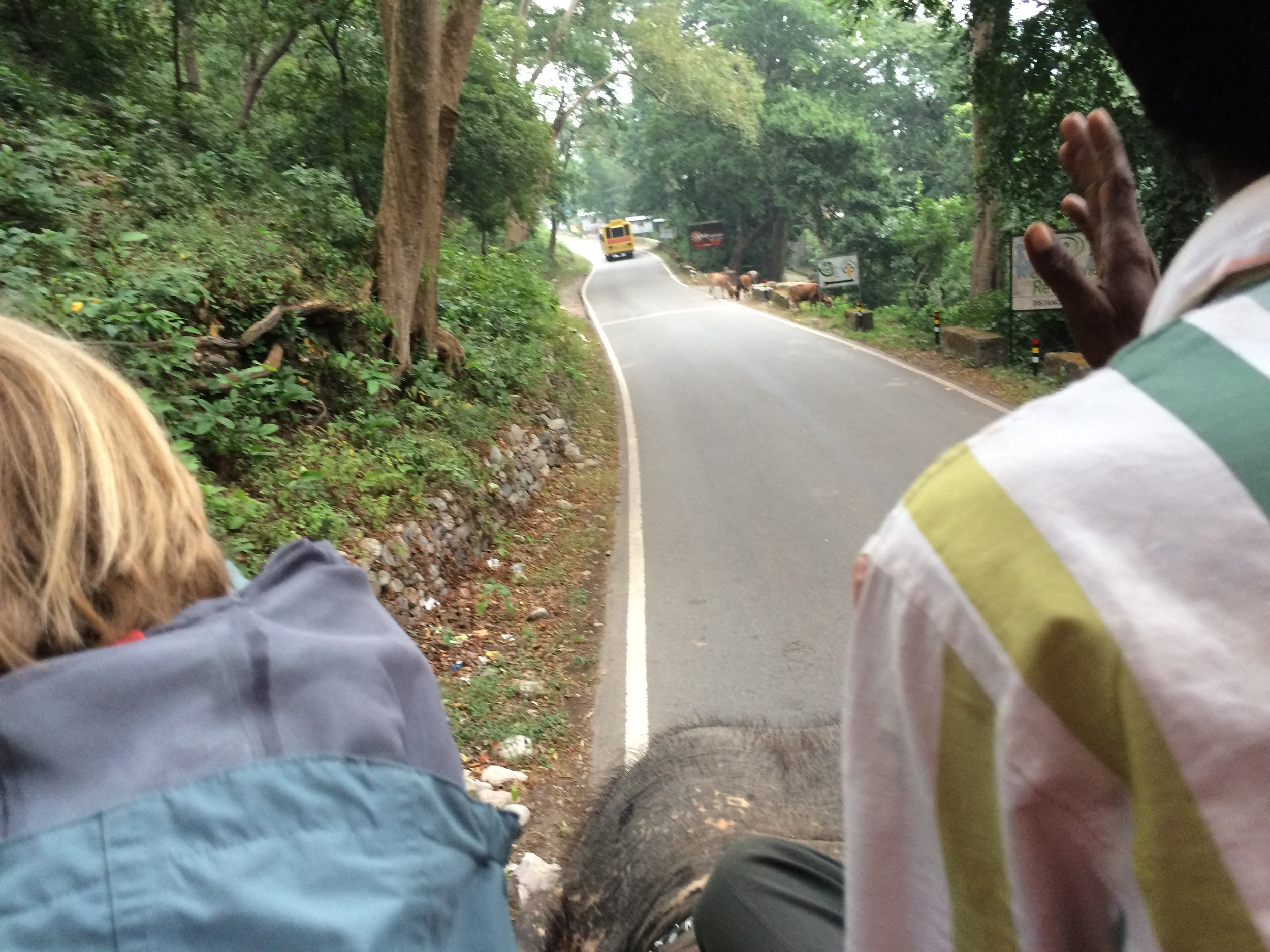 Our ride started off on the road that cuts through Jim Corbett National Park.