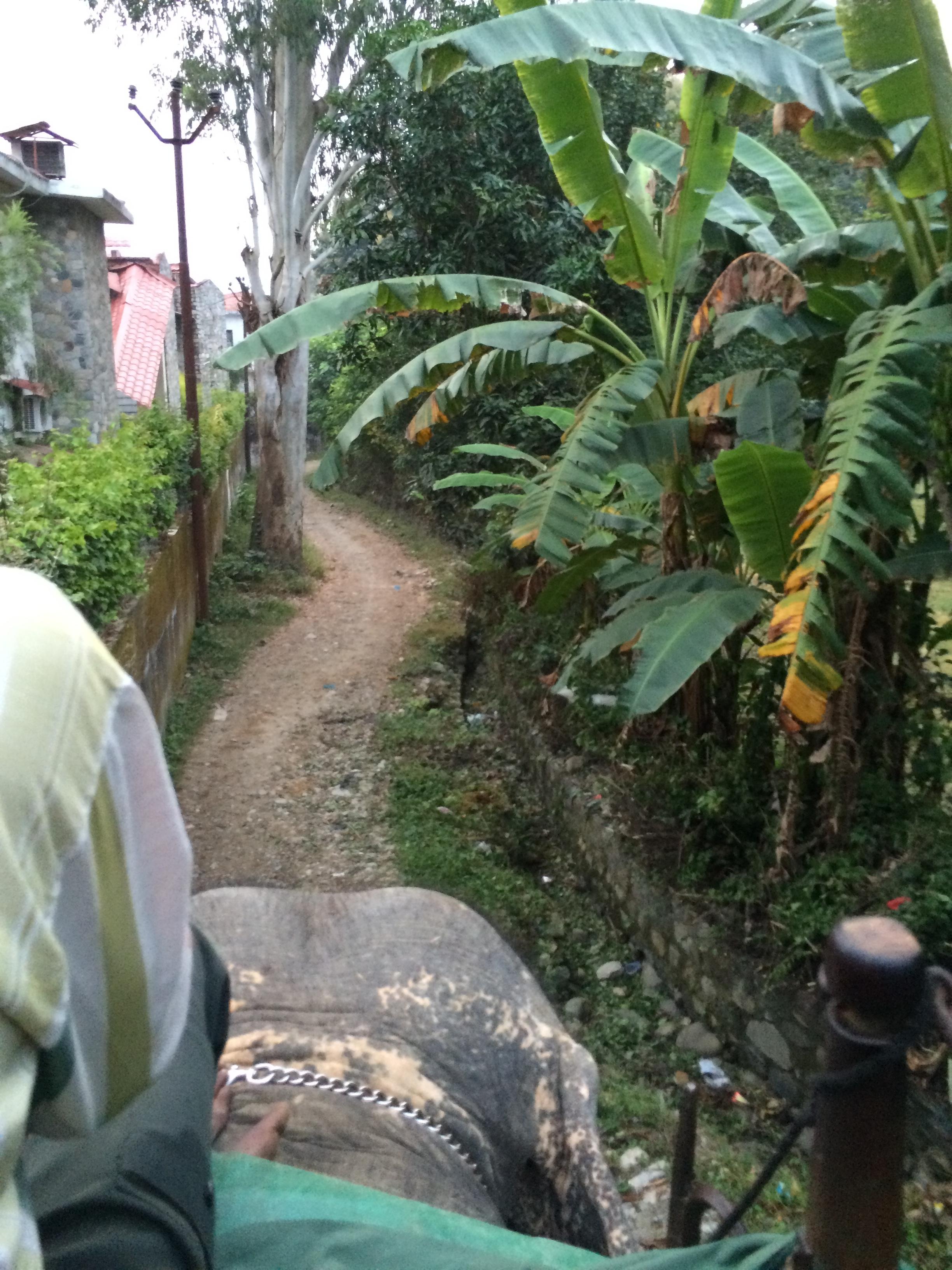 Kalina takes us through the village to the river