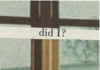 did i?.jpg
