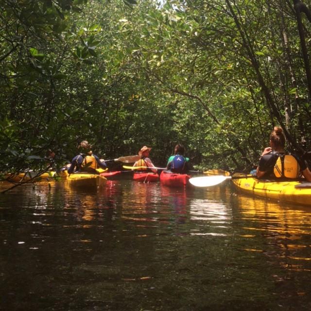 ISDSI Kayaking.jpg