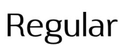 Regular_2.JPG