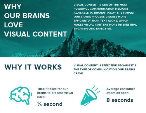 brain_visual.JPG
