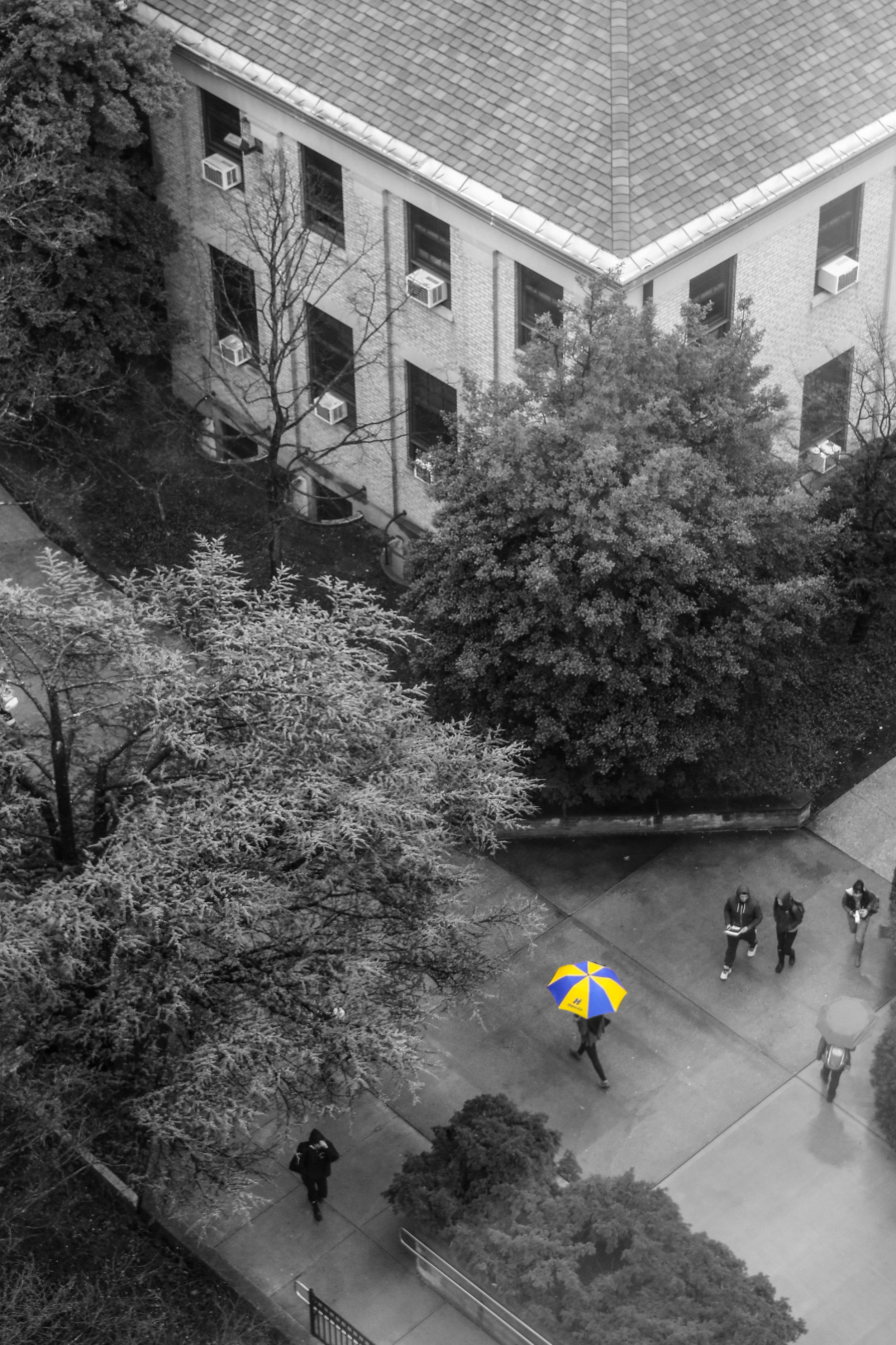 Photographer: Jonathan Heisler, Hofstra University Photographer