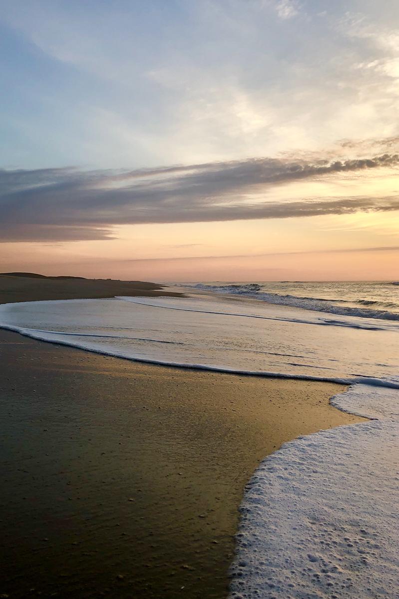 assateague island national seashore _ Jonathan Heisler _ 7272019 _004.jpg