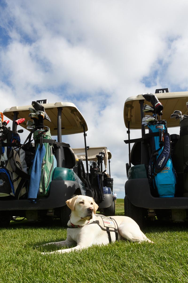 Americas VetDogs Golf Outing _ Jonathan Heisler _ 8262019 _129.jpg