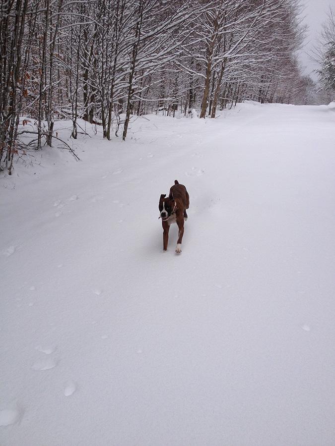 2014-01-18-11.19.37.jpg