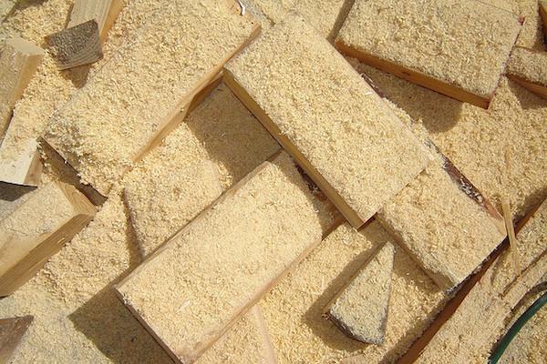 Got dry, flaky, kinda-like-sawdust skin? Is it eczema? (Image  Andreanna Moya Photography )