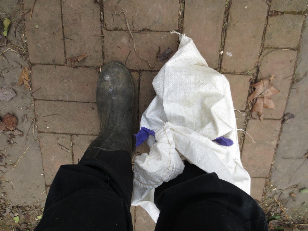 post surgery barn foot.jpg