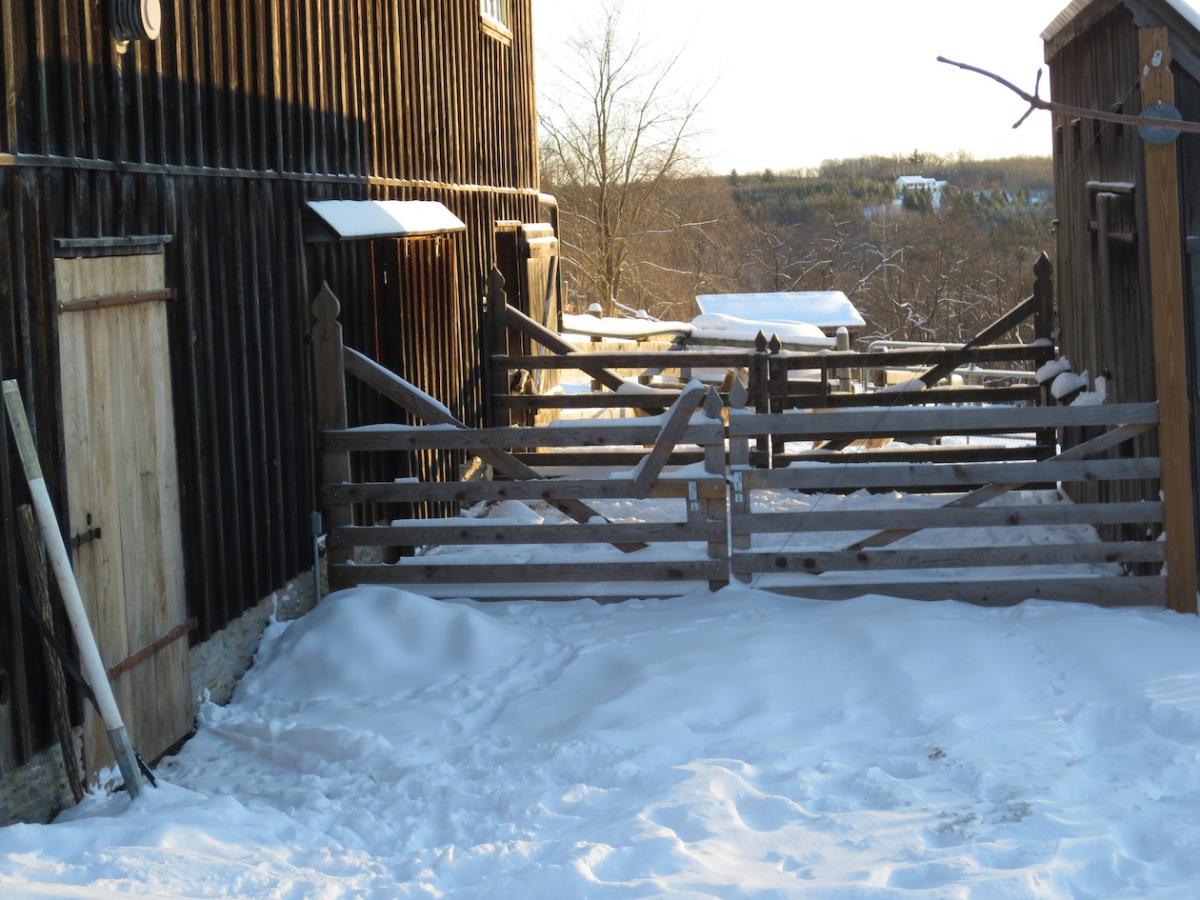 snowy barnyard sm.jpg