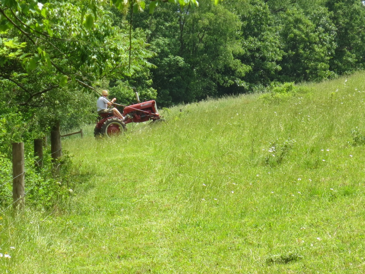 mowing the hill pasture 2 copy.jpg