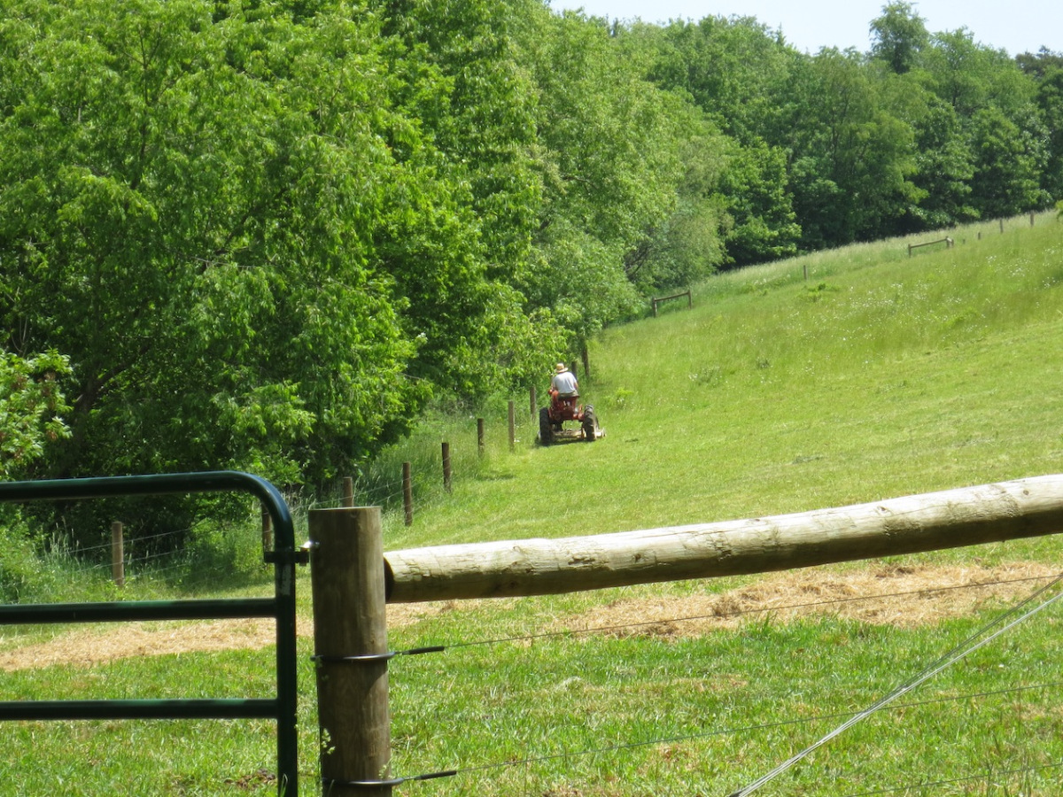 mowing the hill pasture 1 copy.jpg