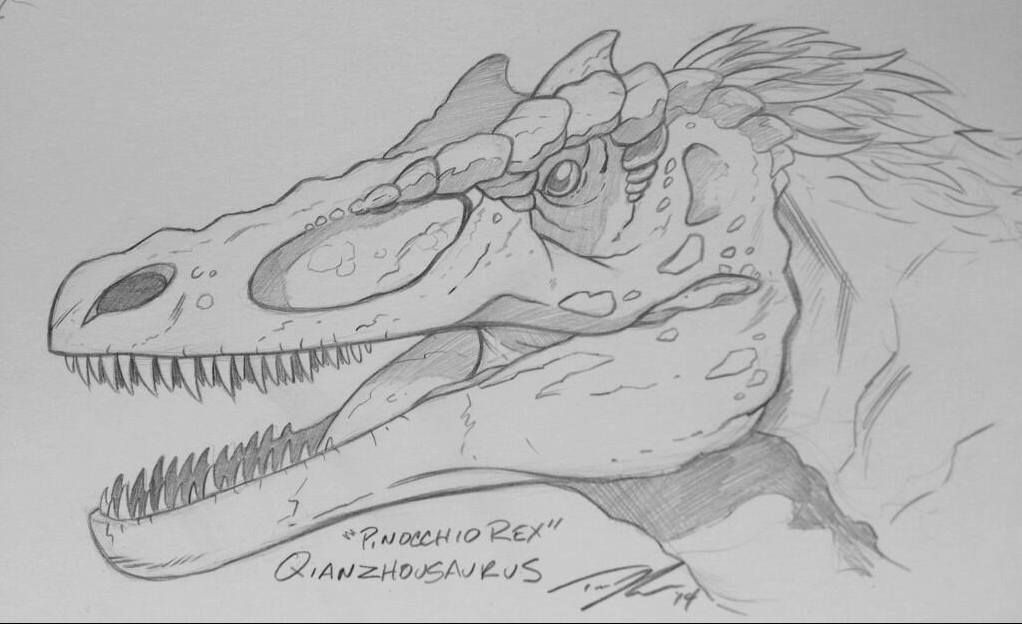 "Another new favorite, the newly discovered ""Pinocchio Rex"", Qianzhousaurus."