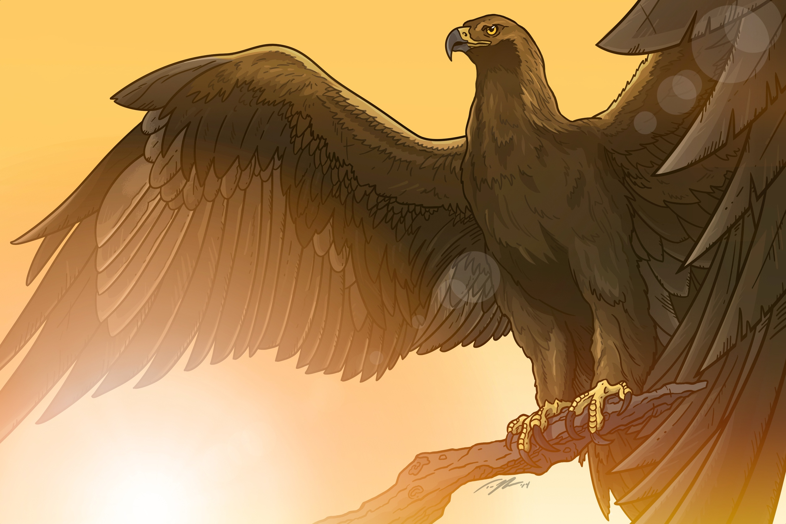 """Golden"" - Golden Eagle"